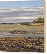 The Maine Coast Wood Print by Skip Willits