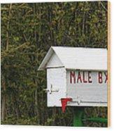 The Male Box Wood Print