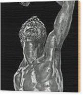 The Male Reach Wood Print