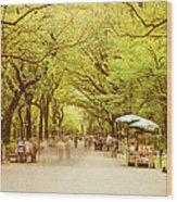 The Mall In Central Park New York City Fall Foliage Wood Print