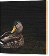 The Mallard Wood Print