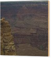 The Many Colors Of The Grand Canyon Wood Print