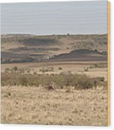 The Mara Plains Wood Print