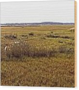 The Marsh At Cape Henlopen Wood Print