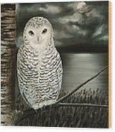 The Marsh At Night Wood Print