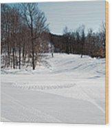 The Mccauley Mountain Ski Area Wood Print