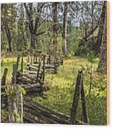 The Meadow Fence Wood Print