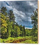 The Meandering Moose River Wood Print
