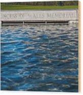 The Memorial Fountain Wood Print