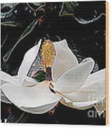 New Orleans Metamorphous Of The Southern Magnolia Spring Equinox In Louisiana Wood Print