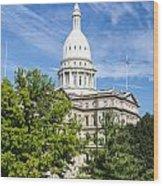 The Michigan Capitol Building Wood Print