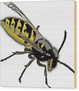 The Mighty Wasp Wood Print