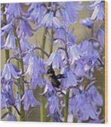 The Milky Bellflower Wood Print