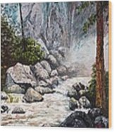 The Mist At Bridalveil Falls Wood Print
