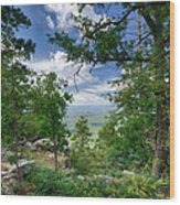 The Mogollon Rim  Wood Print