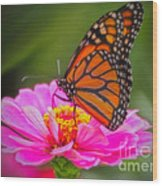 The Monarch's Flower Wood Print
