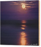 The Moon Is Just The Sun At Night Wood Print by Mark Miller