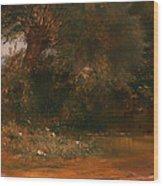 The Moor Hen's Haunt Wood Print
