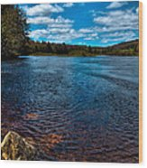 The Moose River In The Spring Wood Print