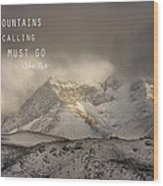 The Mountains Are Calling And I Must Go  John Muir Vintage Wood Print
