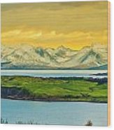 The Mountains Of Arran From Douglas Park Largs Wood Print