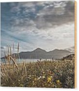 The Mourne Mountains  Wood Print