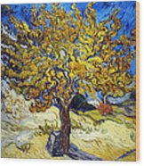 The Mulberry Tree Wood Print