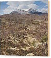 The Munro Of Sgurr Nan Fhir Duibhe Wood Print