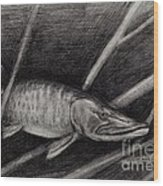 The Musky Wood Print by Larry Green
