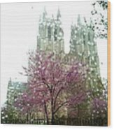 The National Cathedral  Wood Print