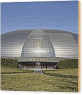 The National Grand Theatre - Exterior - Beijing China Wood Print