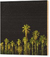 The Night Sky Over Death Valley Wood Print