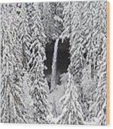 The North Falls View Wood Print