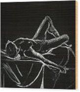 The Nude Wood Print