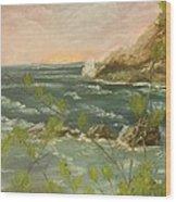 The Ocean View Wood Print