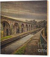 The Old Aqueduct Wood Print