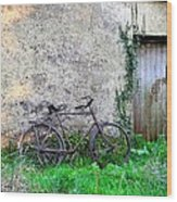The Old Bike In The Irish Countryside Wood Print