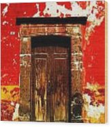 The Old Door Wood Print