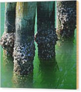 The Old Fishing Pier Wood Print
