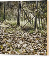 The Old Gate Wood Print