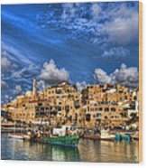 the old Jaffa port Wood Print by Ron Shoshani