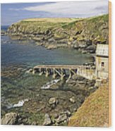 The Old Lizard Lifeboat Station Wood Print