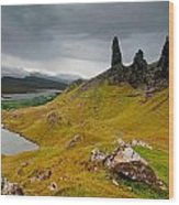 The Old Man Of Storr Wood Print