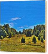 The Old Maple Ridge Ski Area - Old Forge Ny Wood Print