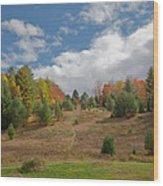 The Old Maple Ridge Ski Slope Wood Print