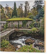The Old Mill Wood Print by Adrian Evans