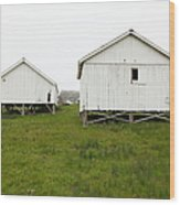 The Old Pierce Point Ranch At Foggy Point Reyes California 5d28140 Wood Print