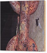 The Old Rusty Chain Wood Print