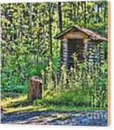 The Old Shed Wood Print by Cathy  Beharriell
