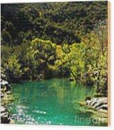 The Old Swimmin' Hole Wood Print